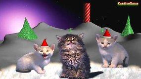 """Kalėdų dainas miaukiančios katės """"Jingle Cats"""""""