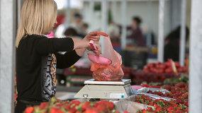 Reidas į Kalvarijų turgų: pirkėjų kainos negąsdina, šluoja braškes ir daržoves