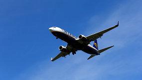 """""""Kylam"""": ką reikia žinoti planuojant skrydį su augintiniu?"""