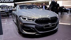 BMW gamoje daugėja hibridinių automobilių