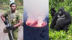 Ekspedicija Afrika: kelionė su karine palyda pas gorilas ir prie lavos ežero
