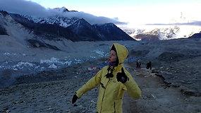 Everesto link: tikslas pasiektas!