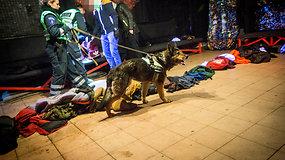 Tarnybinis šuo Gilza naktiniame klube aptiko narkotikų