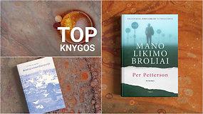 Knygų TOP 10: skandinaviška melancholija, kelionės į save ir nauji žinomų rašytojų kūriniai