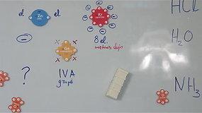 """Karolinos Petraitytės darbas """"Chem Tokens"""" – inovatyvi priemonė chemijos pamokoms"""