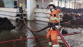 Išskirtiniai kadrai: pirmą kartą parodė, ką mato su gaisru Alytuje kovojantys ugniagesiai