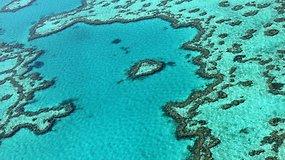 Įspūdingas gamtos kūrinys – barjerinis rifas – pradėjo blukti