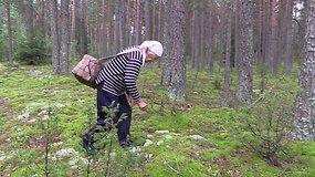 Senolė parodė, kaip grybauja dzūkai