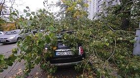 Stiprus vėjas verčia medžius – vilnietei apgadino automobilį