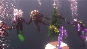 Kaip atrodo Kalėdos po vandeniu?