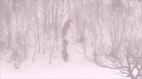 Japonijoje sniego lavina pražudė mažiausiai 8 moksleivius