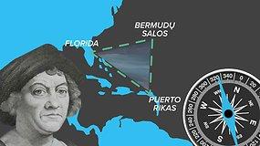 Bermudų trikampio paslaptis: kaltos dujos