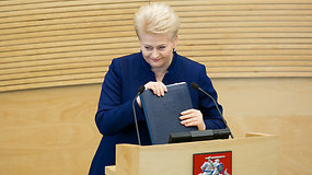 """Prezidentė Dalia Grybauskaitė: """"Užsitęsusi valstybės valdymo sumaištis jau kelia nerimą"""""""