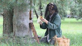 Musteikos kaime ramios bitės neša medų kibirais
