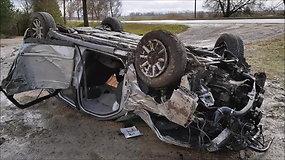 """Joniškio rajone girtas """"Audi"""" vairuotojas išguldė medžius"""