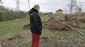 Prie Antanavo kaimo ES lėšomis įrengtas rekreacinis parkas – plynai iškirstas