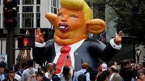 Niujorke iškilo pripučiama Donaldo Trumpo žiurkės figūra