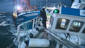 Laivų mūšis: Lamanšo sąsiauryje kovėsi prancūzų ir britų žvejai