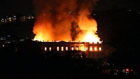Ugnies liepsnos smogė 200 metų Brazilijos Nacionaliniam muziejui