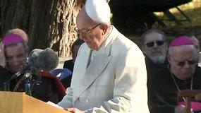 Estijoje neramus vėjas nupūtė popiežiaus Pranciškaus pijusę