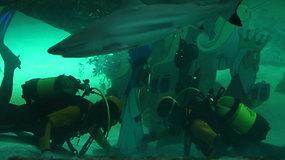 Rykliai neatbaidė nuo pasiruošimo šventėms – po vandeniu narai įrengė prakartėlę