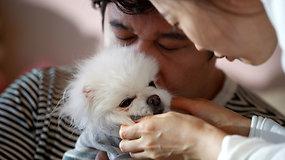 Demografinė krizė Pietų Korėjoje: šeimos pirmenybę teikia gyvūnams
