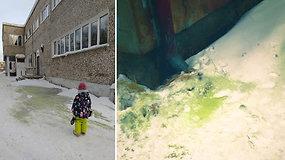 Rusijos gyventojai sunerimo dėl toksiško žalio sniego – prasidėjo alerginės reakcijos