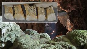 Įspūdingas atradimas: archeologai aptiko iki šiol nežinotą paslaptingą žmonių rūšį