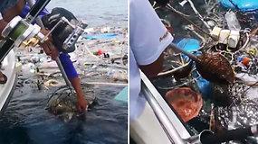 Širdį veriantis vaizdas sujaudino žvejus: žmonių klaidos skaudžiai paliečia nekaltas būtybes