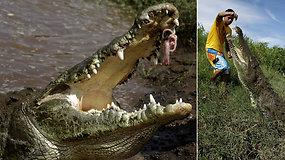 Baisu net stebėti: pavojingus laukinius krokodilus vyras šeria rizikuodamas gyvybe