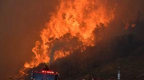 Nufilmuota, kaip teko sprukti nuo plintančių pavojingų liepsnų – evakuojama maždaug 50 tūkst. gyventojų