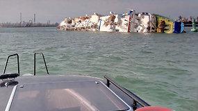 Prie Rumunijos krantų apvirtus krovininiam laivui galėjo žūti tūkstančiai avių
