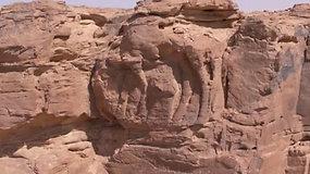 Unikalus atradimas:mokslininkai aptiko 2 tūkst. metų senumo kupranugarių bareljefus