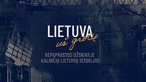"""15/15: Projektas """"Lietuva už grotų"""": užsienyje nusikaltę prašosi Lietuvon. Ar verti?"""
