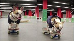 Šunytė riedlentininkė stebina pasaulį – visko išmoko pati, savo noru treniruojasi kiekvieną savaitę