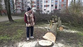 Rumpiškės kvartalo gyventojai sielojasi dėl kertamų medžių su lizdais