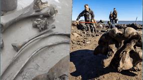 Archeologai aptiko įspūdingą radinį – puikiai išsilaikiusį, mažiausiai 10 000 m. amžiaus mamuto skeletą