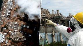 Fukušimos atominės elektrinės avarijai sukanka 10 m.: katastrofa, kurios pasekmės juntamos iki šiol