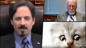 Prokuroras netikėtai tapo liūdnu mėlynakiu kačiuku – virtualiame teismo posėdyje įsijungė filtrą