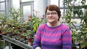 VDU botanikos sodo specialistė pataria, kaip persodinti orchidėjas