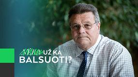 """L.Linkevičius: """"Partija opozicijoje gal ir įdomi retorine prasme, bet šiaip tai ji nieko negali"""""""