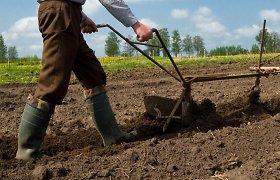 Pasikeitusi išmokų tvarka pakenks stambiųjų ūkininkų konkurencingumui