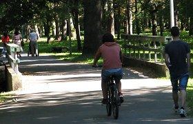 Pristatomi pasiūlymai dėl Kauno Ąžuolyno parko tvarkymo