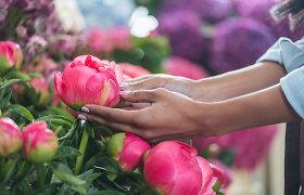 Į pareigūnų akiratį pateko didmenine prekyba gėlėmis besiverčianti bendrovė