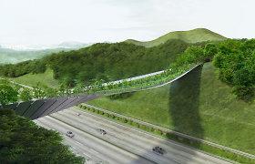 Triumfas: Seulas renkasi įspūdingą Lietuvos architektų projektą