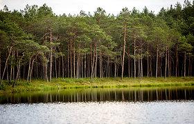 Aplinkos komitetas neapsisprendė dėl urėdijų reformos