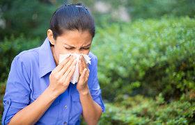Gydytojo argumentai, kodėl nereikia susitaikyti su varginančiais alergijos simptomais