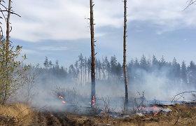 Ukrainos Luhansko srityje miškų gaisrų aukų skaičius išaugo iki devynių