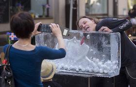 Sostinės Islandijos gatvėje iškilo ledinė skulptūra dainininkei Bjork