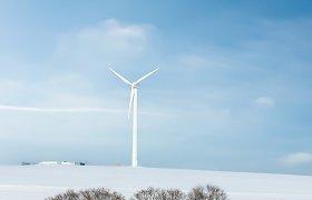 Lietuva tampa žalesnė: vėjo jėgainės pernai pagamino 1,49 TWh elektros